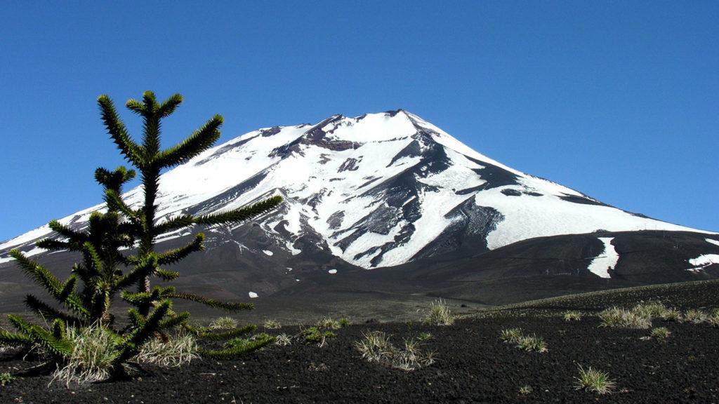 Lonquimay, nueva Zona de Interés Turístico en Chile