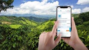 El servicio CO2ZERO puede ser solicitado mediante la app de KLM (Foto: KLM Royal Dutch Airlines)