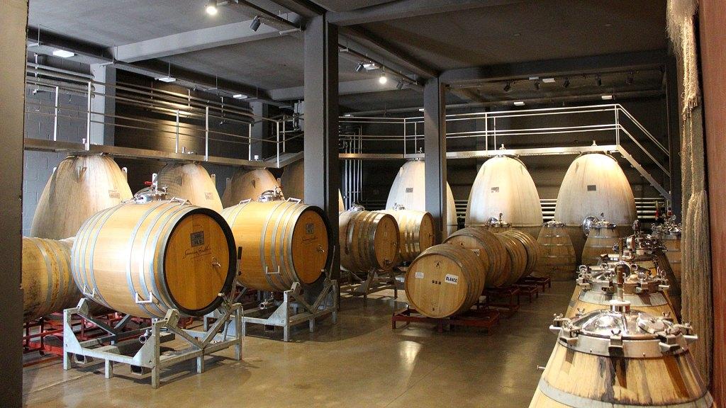 Bodega con barriles y contenedores de concreto para vino