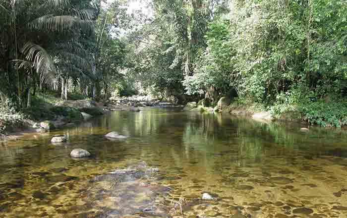 Ubatuba Dicas de Trilhas e Passeios nas Ruínas da Lagoinha