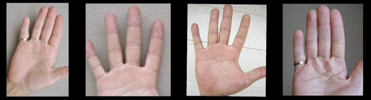 palmistry video, success signs for business, free palmistry
