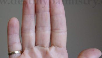 Long Fingers Meaning in Palmistry - Destiny Palmistry