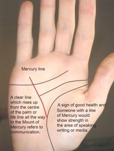 mercury line, line of health, health line, liver line,