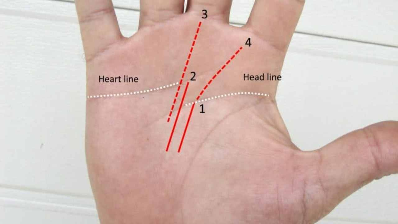 Career Fate Line Success Prediction From Your Palm - Destiny