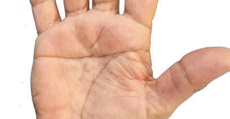 palm reader in redland bay, palm reader in queensland, australian palm reader, simian line, simian lines, best palm reader in the world, double simian