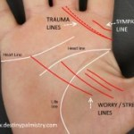 stress lines, worry lines, palm lines, destiny, palmistry, best palm reader in the world