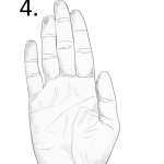 hand shape, narrow hand, water hand