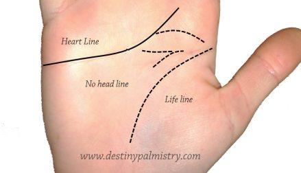 no head line, missing head line, partial head line, small head line, tiny head line, missing brain line