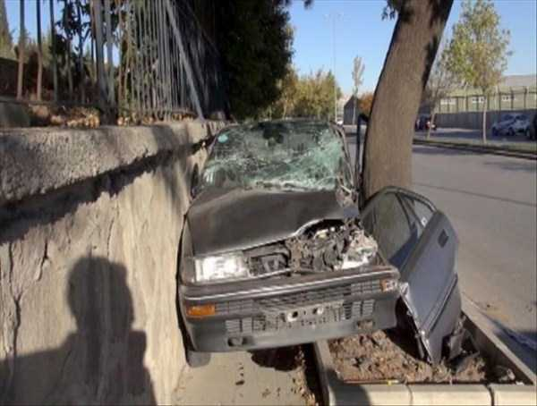 cars-in-bizarre-situations-14