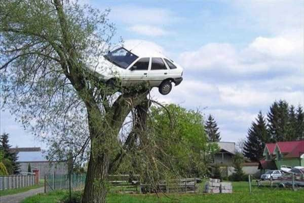 cars-in-bizarre-situations-4