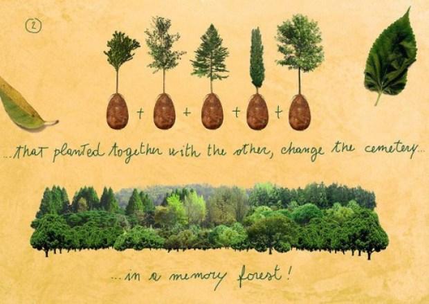 868642_biodegradable-burial-pod-memory-forest-capsula-mundi-8-Optimized