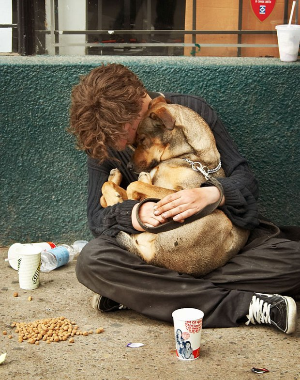 homeless-dogs-unconditional-love-best-friend-53__700