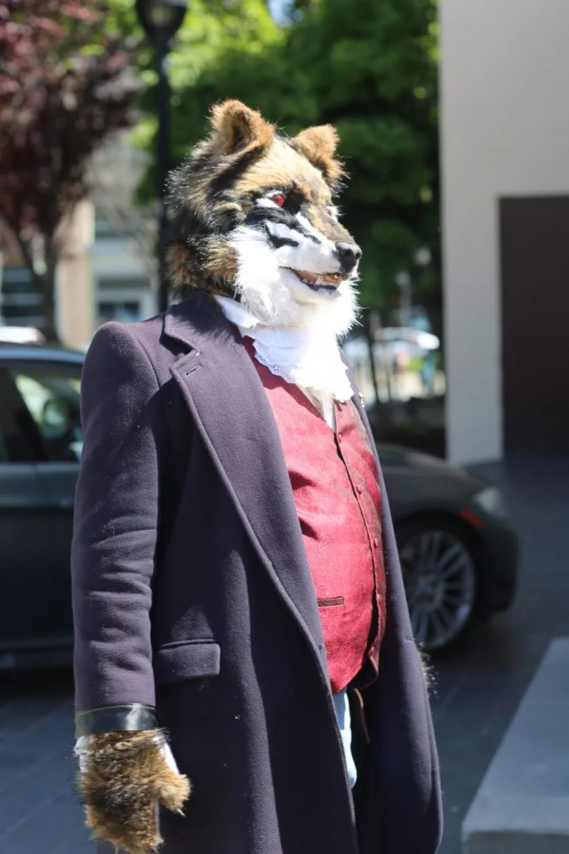cosplay dog puppy animal cute human gentleman