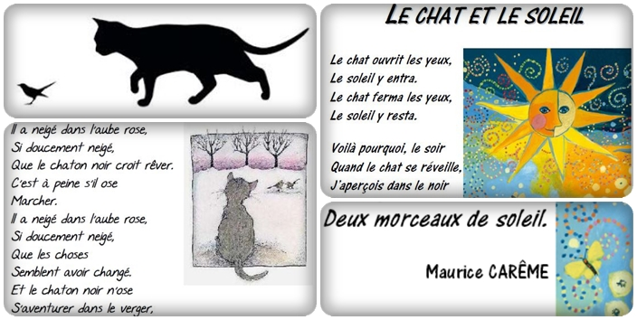 Poésies sur le thème du chat