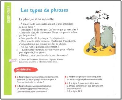 Les types de phrases - CM1/CM2