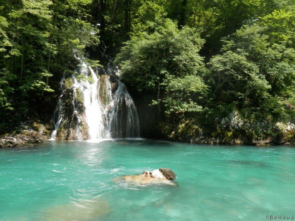 Photo de la rivière Tara au Montenegro - cascade