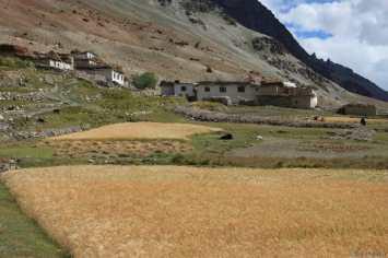Village du Zanskar 2