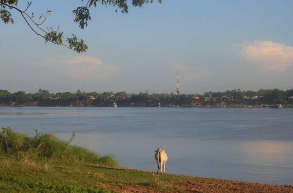 Visiter Kampong Cham au Cambodge : Coup de coeur