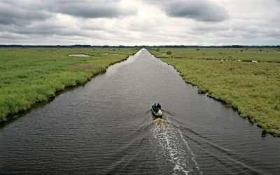 Balade dans le Parc Naturel Régional de Brière en Loire Atlantique