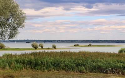 Lac du Der : activités et infos pratiques sur une destination surprenante