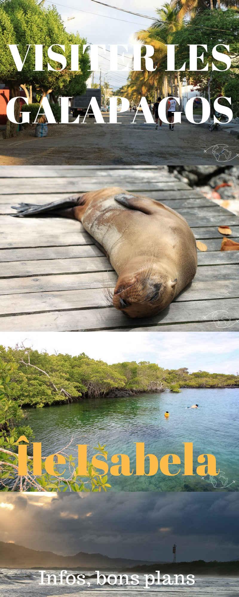 Mon expérience de voyageur, des infos, des bons plans et des photos de la sublime île Isabela dans les l'archipel des Galapagos #Galapagos #Equateur #Isabela
