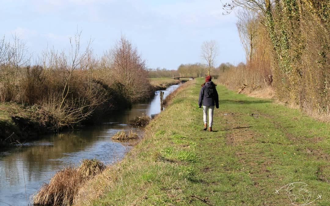 Randonner en Deux-Sèvres : mes 5 randonnées préférées en 2017