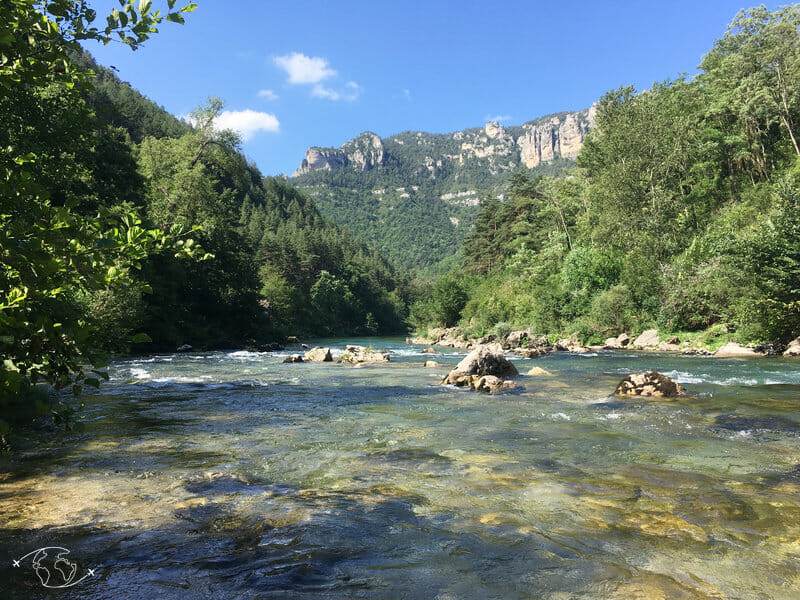 Vue du bord de l'eau sur le sentier des Gorges du Tarn