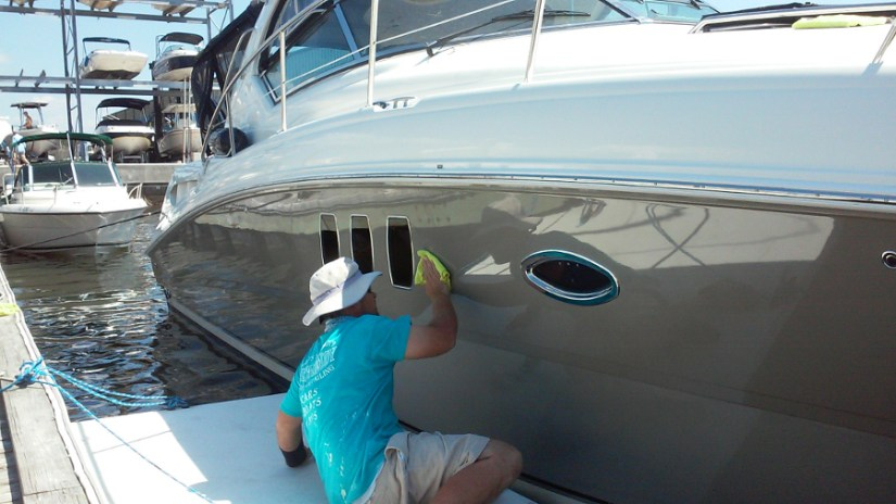 searay detailiing in dunedin florida