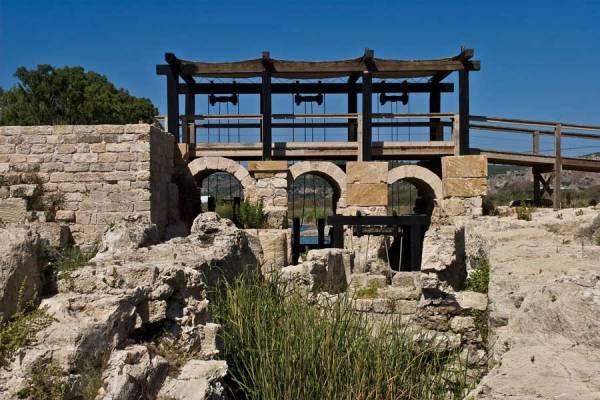 Природа Израиля в Деталях: где отдохнуть всей семьей в ...