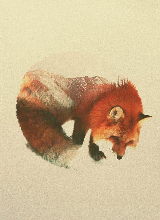 double-exposure-animal-photography-andreas-lie-3__880