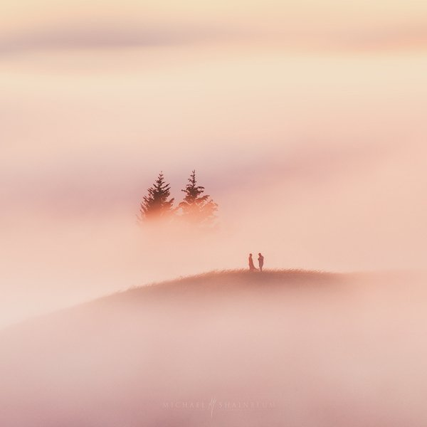 Together We Stand - Stunning Nature Photography by Michael Shainblum <3 <3