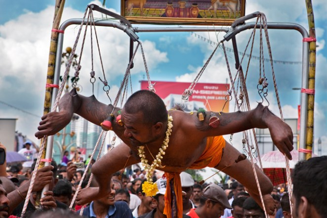 [UNVERIFIED CONTENT] Indian pilgrim hooked to his back. Thaipusam is a hindu festival celebrated mainly by the Tamil community. Outside of India, it is celebrated mainly by the Tamil speaking community settled in Malaysia, Singapore, South Africa, Sri Lanka and elsewhere around the world. Thaipusam celebrations in Malaysia and Singapore are known for their festive fervor. The most famous Kavadi pilgrimage on the Thaipusam day takes place at the Batu Caves in Malaysia, where a large number of devotees head towards the Murugan temple in procession carrying the 'Kavadi'. This festival attracts over a million people each year at the Batu Caves, near Kuala Lampur, which houses several Hindu shrines. The procession to the caves starts at the city center hindu temple and then the pilgrims walk 15km to Batu Caves. It was a 5 hour walk and it started at midnight. Pilgrims then need to climb 272 steps to access the temple on the hilltop, in the caves. Many fanatical devotees go to such extent as to torture their bodies to appease the Lord. So, a major feature of Thaipusam celebrations is body piercing with hooks, skewers and small lances called 'vel'. Many of these devotees even pull chariots and heavy objects with hooks attached to their bodies. Many others pierce their tongue and cheek to impede speech and thereby attain full concentration on the Lord.