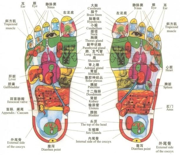 foot-reflexology-660x568
