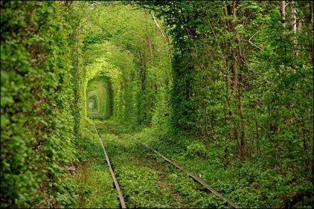 tunelmilosci-ukraina