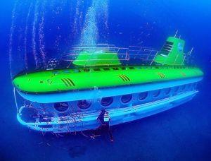 Safari sous-marin
