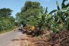 Anggaran 3,5 Miliar, Swakelola PUPR Lampung Terkesan Asal-asalan