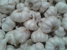 Manfaat Bawang Putih Untuk Kesehatan: Penyembuh Herbal