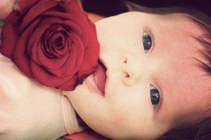 Nama Bayi Artinya Mawar