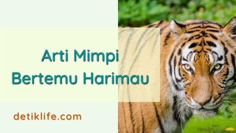 Mimpi Bertemu Harimau