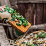Los mejores y peores alimentos para el compostaje