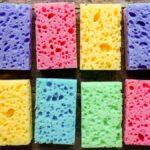 Deberías poner esponjas en tus plantas de interior