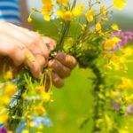 Las mejores formas de usar su jardín al aire libre para decorar su hogar