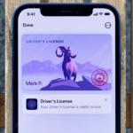 ¿Cómo agregar una identificación oficial a la billetera de su teléfono en iOS15?