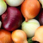 Cómo saber si sus cebollas están relacionadas con un brote de salmonela