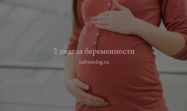 2 неделя беременности от зачатия – признаки, что ...
