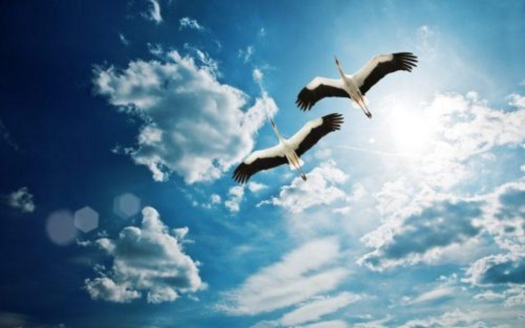 20 de caracteristici ale unei persoane sănătoase spiritual
