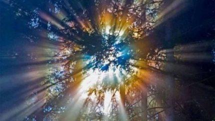 Credinţa şi confirmarea ei - aspecte ale vieţii care confirma credinţa
