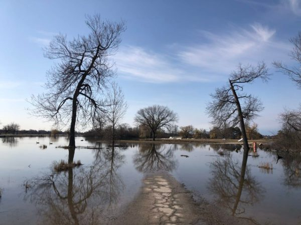 Belle Isle flooded - April 5, 2020.