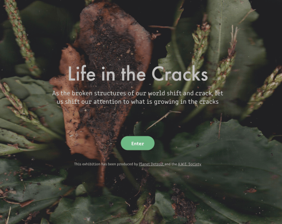life in the cracks