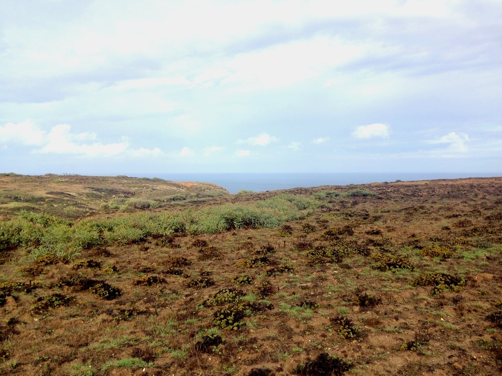 portugal-parc-regional-sud-ouest-algarve_blog detours du monde